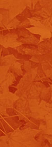 orange-leaves.jpg