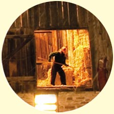 Chores in barn card closeup