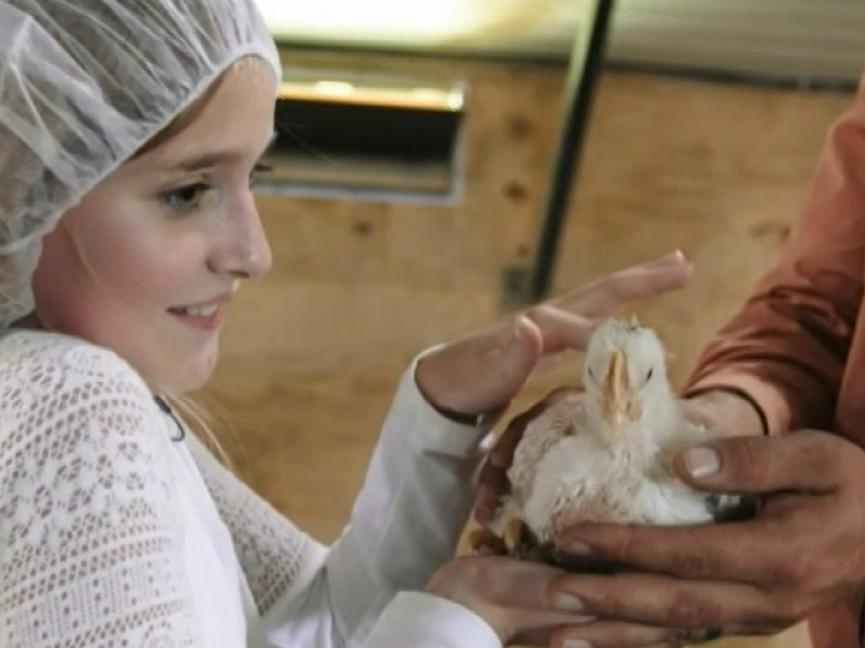 Ky poultry operation visit