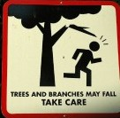 tree safety sign