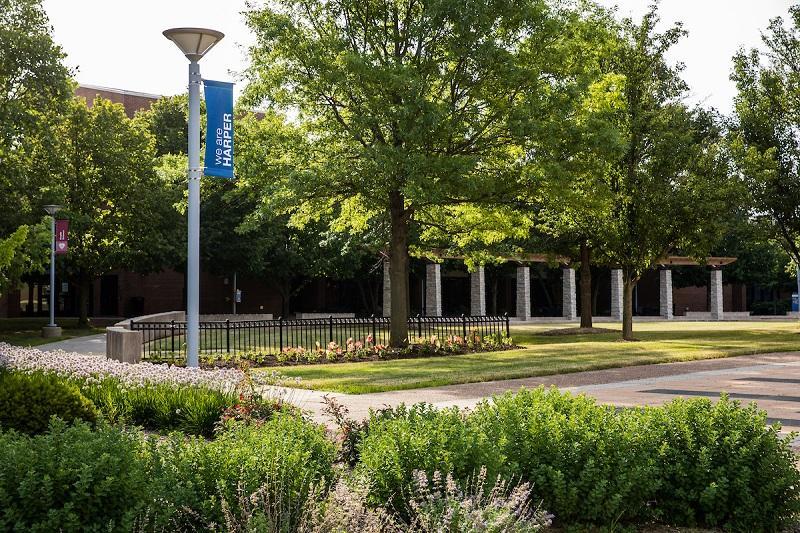 summer harper campus