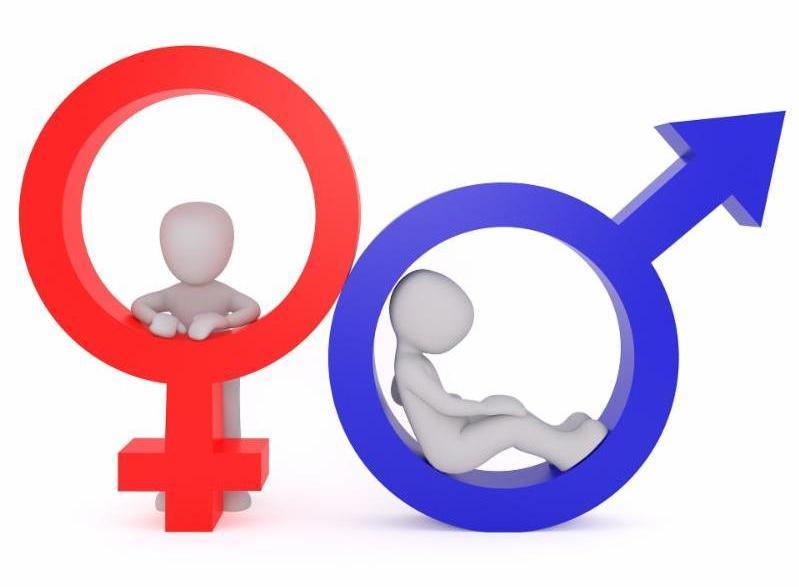 gender workshop