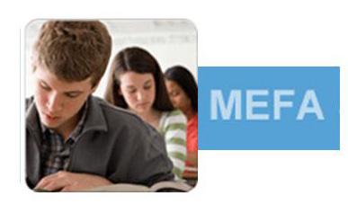 MEFA image