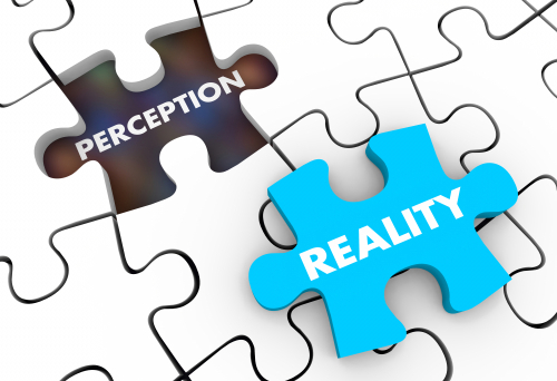 Perception Vs Reality Puzzle Pieces 3d Illustration