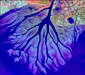 Wax Lake Aerial