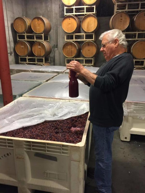Winemaker John testing brix on the last few bins of Sangiovese before it goes to the barrels