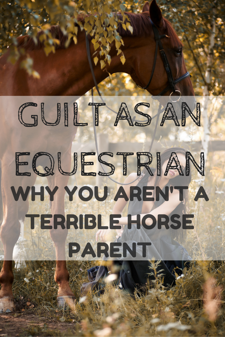 Guilt as an Equestrian