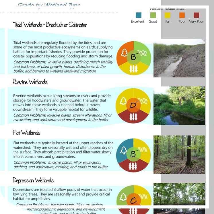 Smyrna Watershed Wetland Health