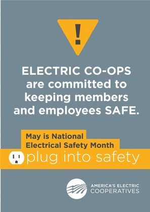graphic about electrical safety