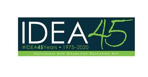 IDEA 45 Logo