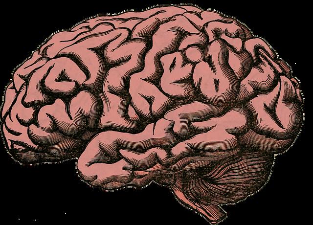 New Insight on Neuropathic Pain Treatment
