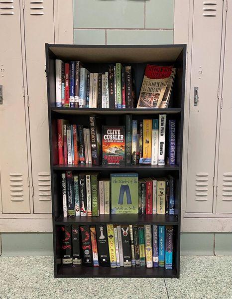 Little Libraries 1.jpg