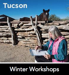 Winter Workshops Tucson