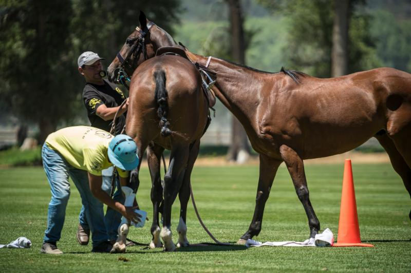 Aspen Valley Polo Club grooms competing during the Grooms Race.