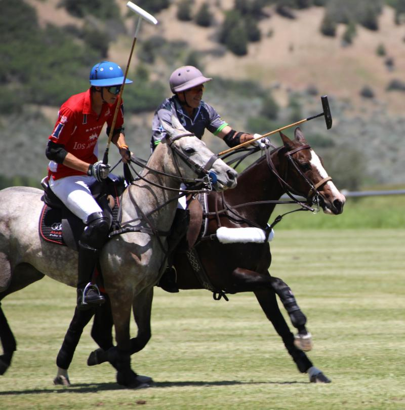 Hilario Figueras of Los Amigos Red and Brian Boyd of La Karina race for the ball.