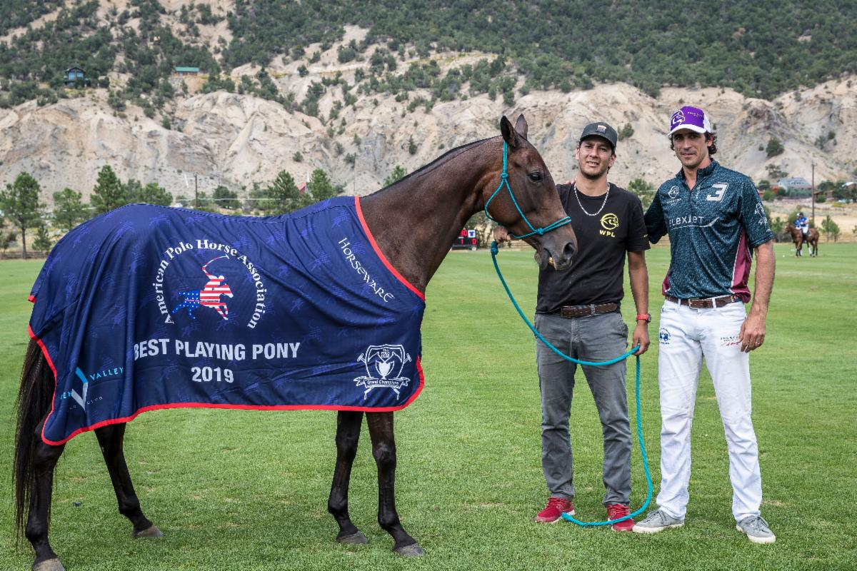 The American Polo Horse Association Best Playing Pony Pitkin_ played by Alejandro Novillo Astrada.