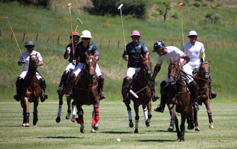 Tom Barrack of Piocho Ranch leads the chase pack.