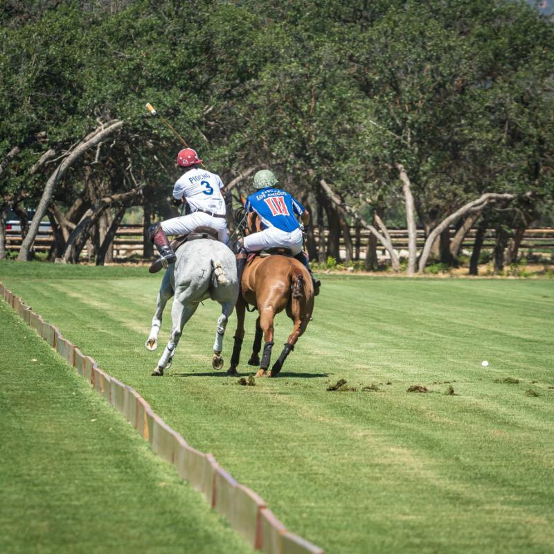 Alejandro Novillo Astrada of Piocho Ranch rides off Salvador Ulloa.