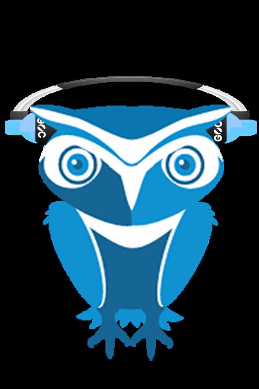 Owl with headphone