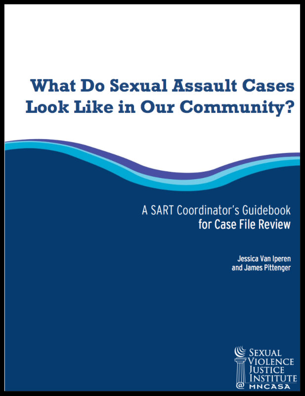 SA Case File Review Document
