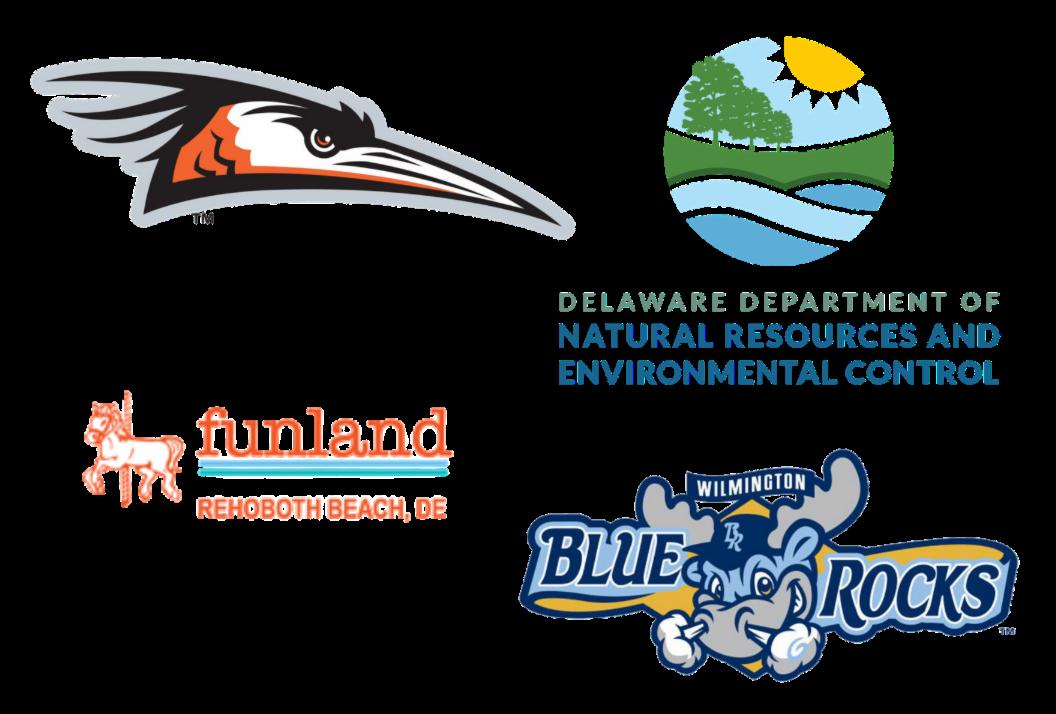 Shorebirds, DNREC, Funland, Wilmington Blue Rocks