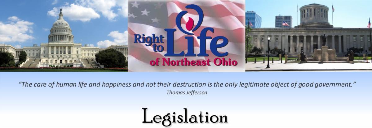 legislative page banner.jpg