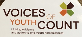Voice of Youth Count