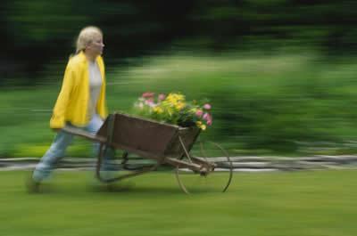 wheelbarrow-girl.jpg