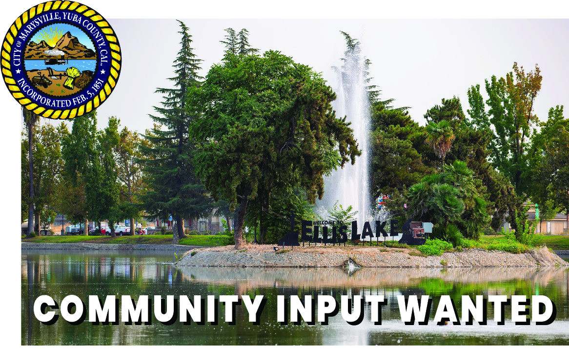 Facebook Image for Public Input.jpg