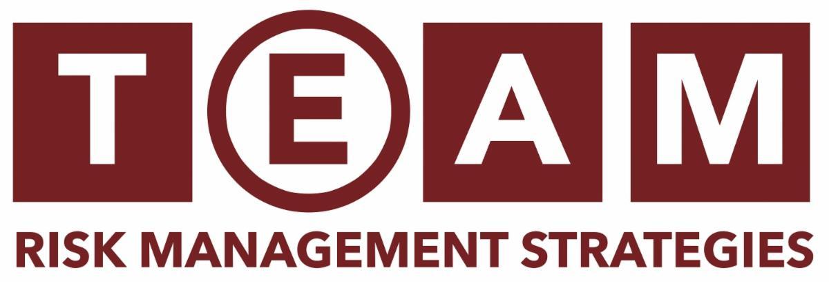 TEAM Rish logo.jpg