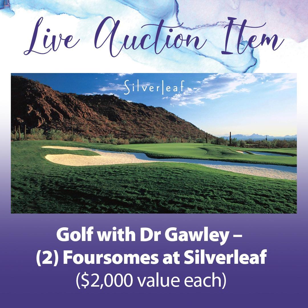 Live auction Item