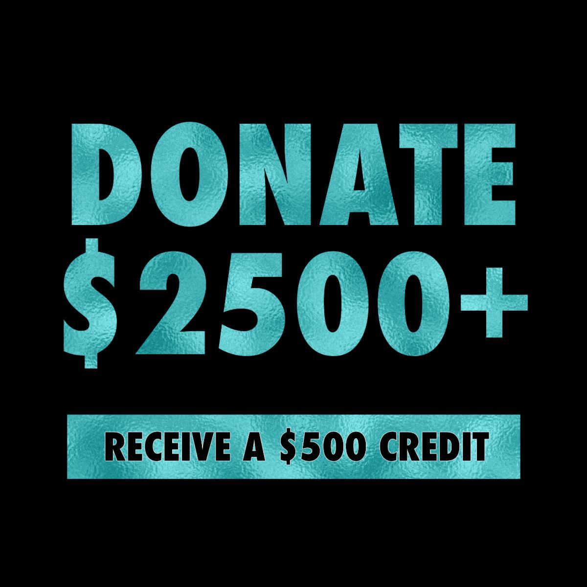 Donate $2500 Receive $500