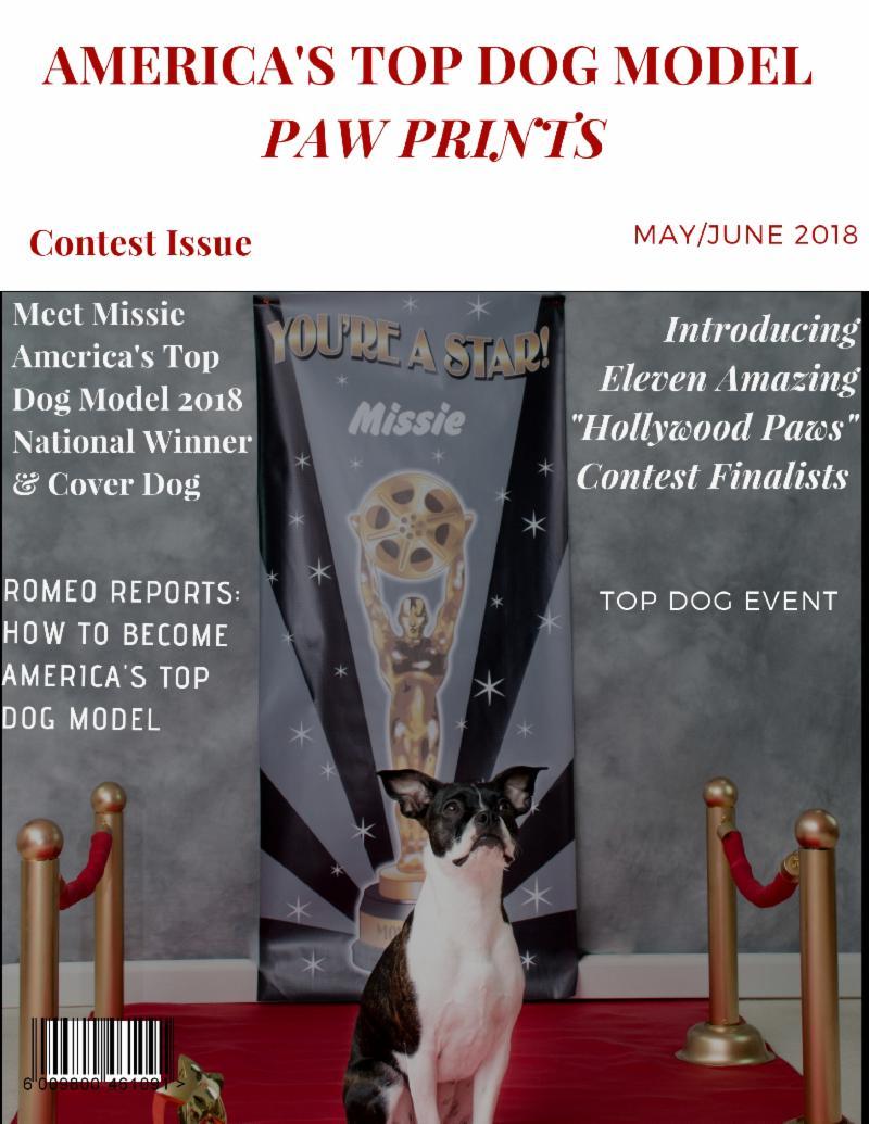 Missie Top Dog Winner