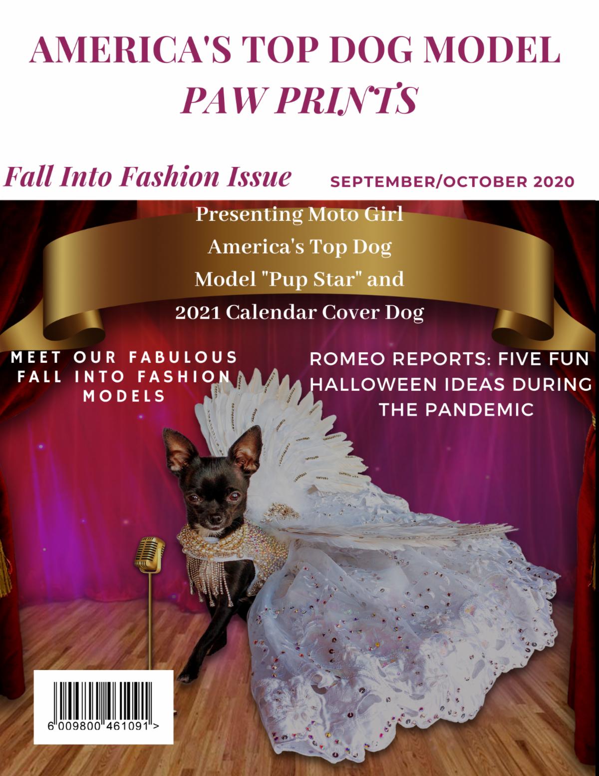 Fall Into Fashion 2020