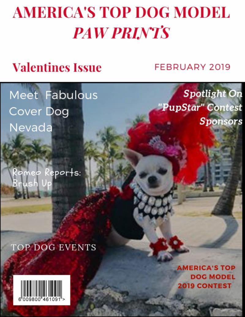 Cover Dog Nevada