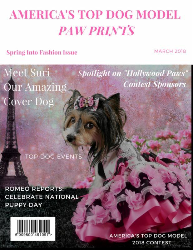 March Cover Dog Suri