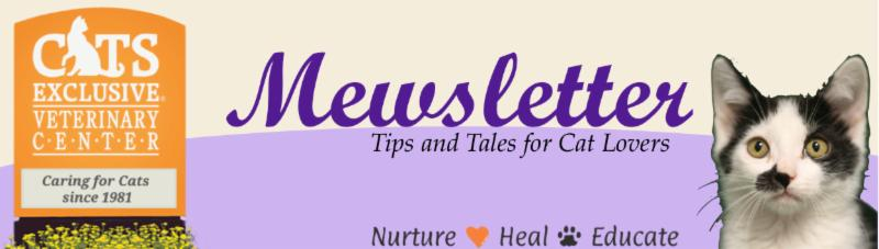 Mewsletter-tips and tales