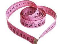 bra fitting measurements