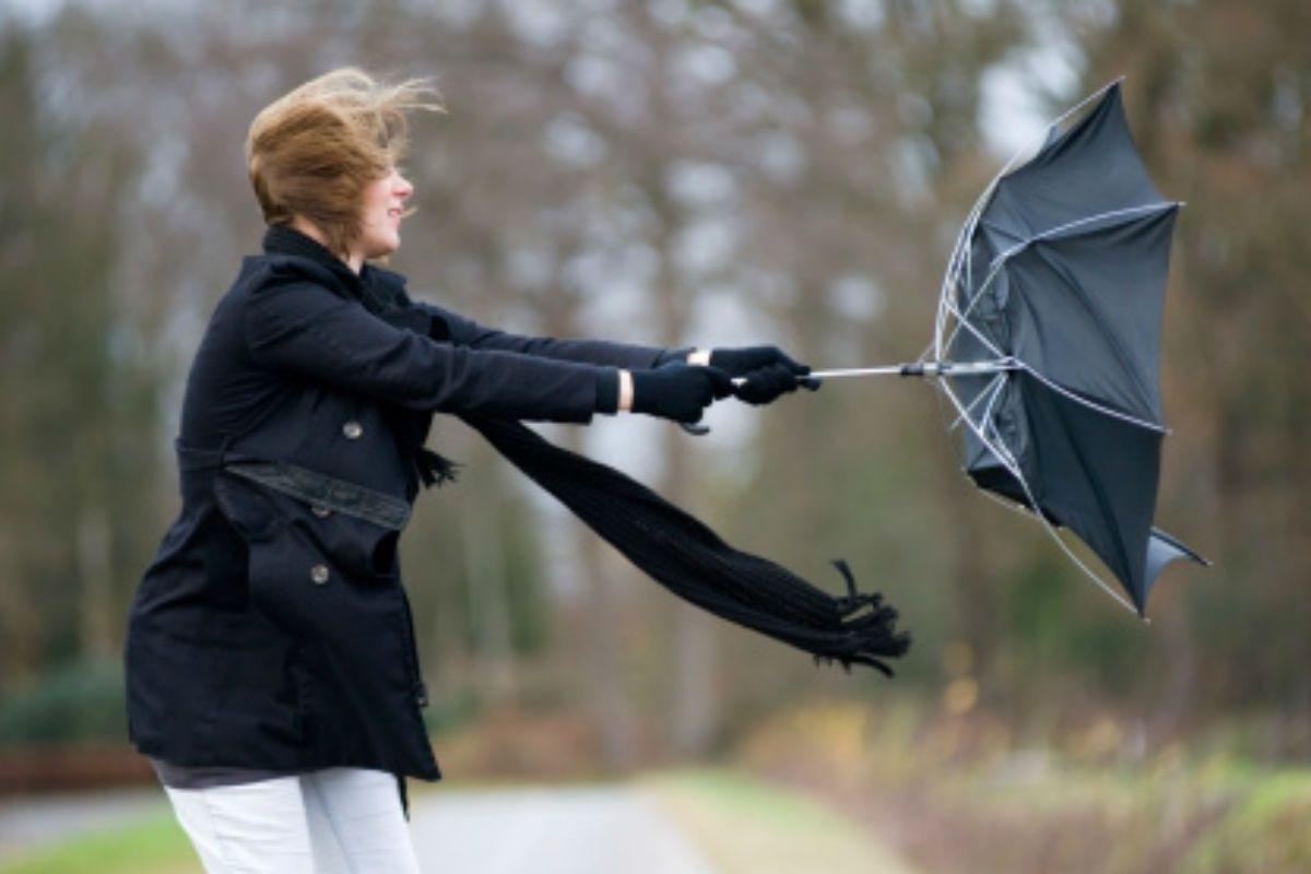 windy umbrella.jpg