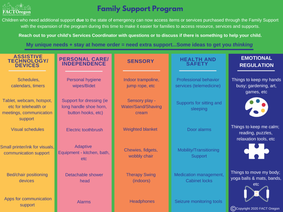 Family Support Program visual chart