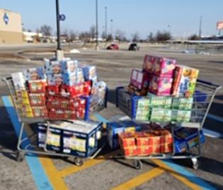 Donated groceries shown in 2 shopping carts