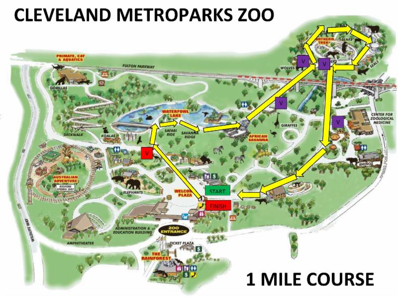 What EveryBuddy Needs To Know About the Buddy Walk at the Zoo! on