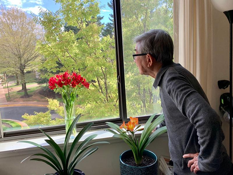 man looking out of window with blooming house plants