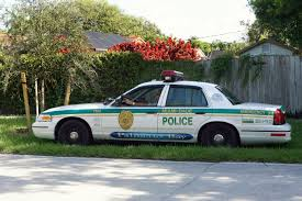 photo of palmetto bay police cruiser