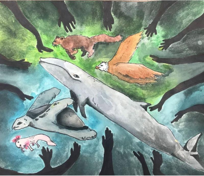 This is the drawing done by our Earth Week art winner, Amelia Ovalle.  It pictures animals including a turtle, whale and eagle