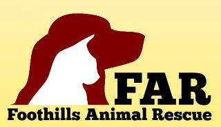 Foothills Animal Rescue Whiskers & Wine