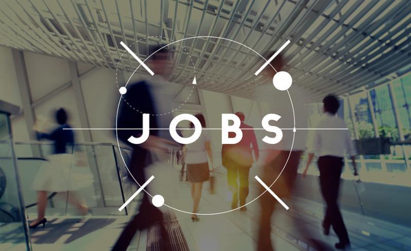 Job Career Employment Occupation Recruitment Concept