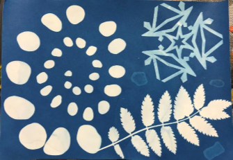 photo of completed sunprint paper project