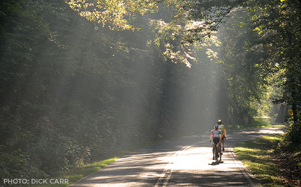 Cyclists ride near the Greenville Watershed