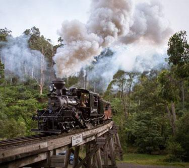 The Puffing Billy, by Michael Greenhill